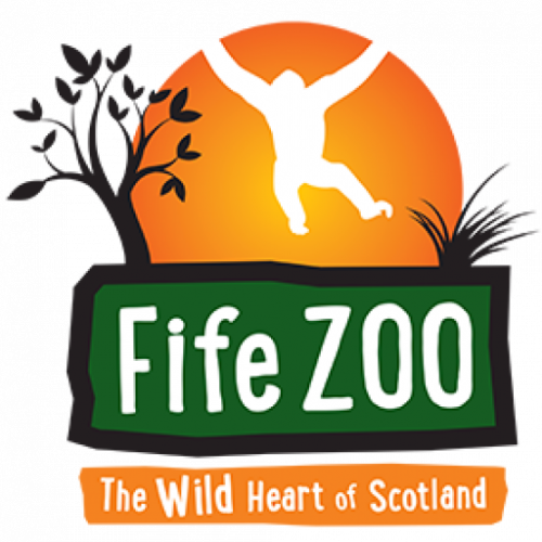 Late Zoo (Night 1) Friday 6th August